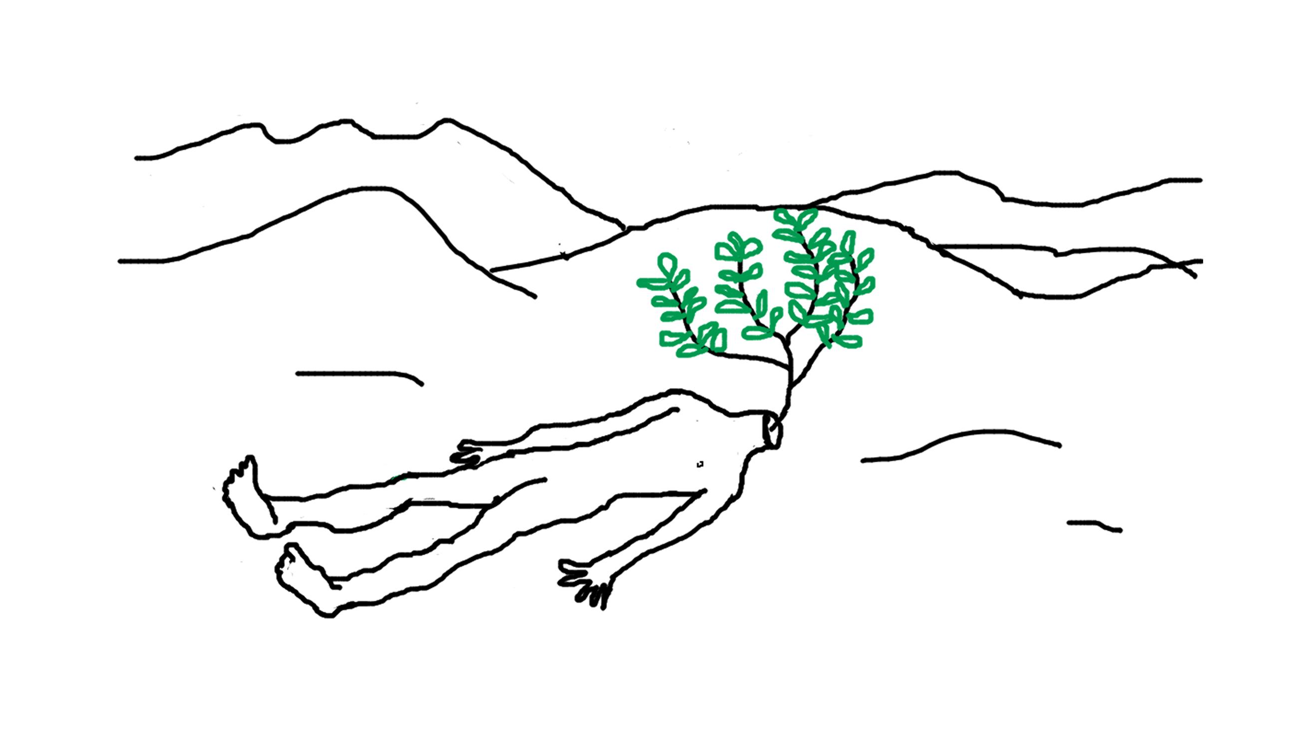 paulpajot-poztonblaz-illustration-8